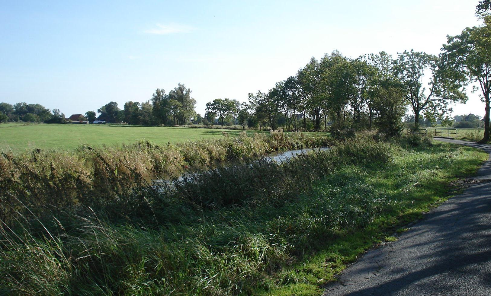 Felder und ein Weg in Niedervieland.