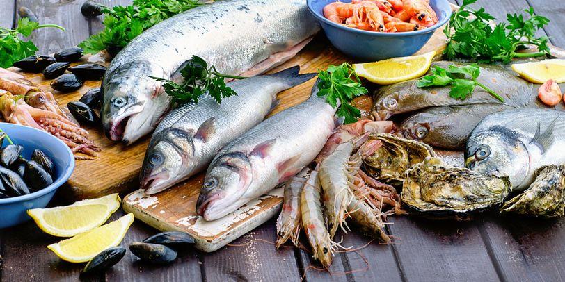 Verschiedene Fischsorten, Muscheln, Garnelen und Tintenfische liegen auf einem Tisch.