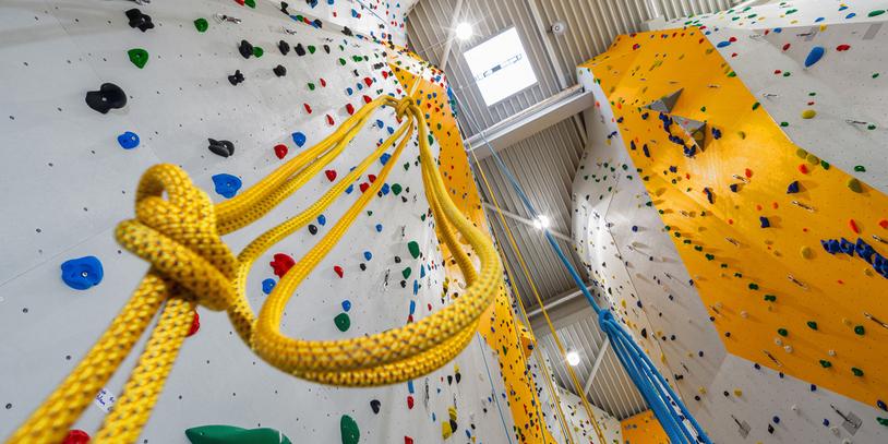 Blick von unten eine Kletterwand hinauf