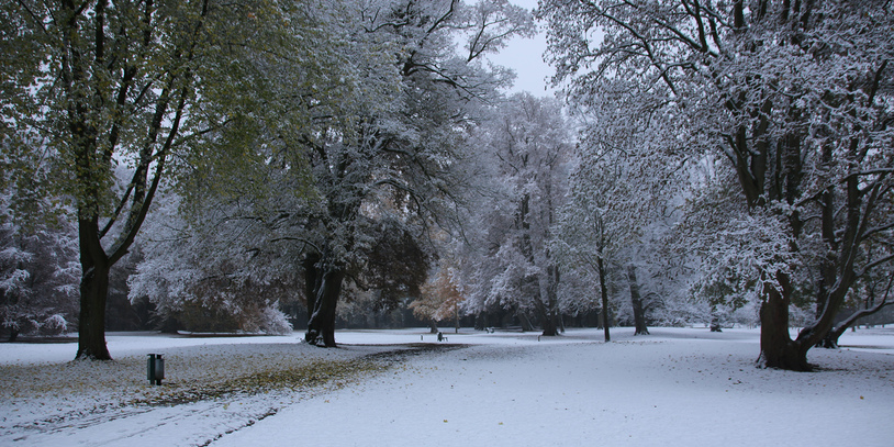 Winter in bremen erleben for Innendekoration vankann gmbh