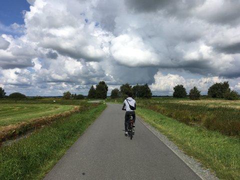 Ein Radfahrer von hinten auf einer Straße, die von Wiesen gesäumt ist