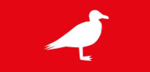 Icon zeigt weiße Möwe auf rotem Hintergrund
