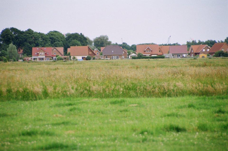 Wiesen, im Hintergrund eine Häuserzeile; Quelle: Ortsamt Seehausen